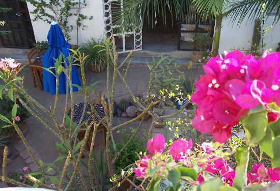 El Angel Azul Hacienda: The Courtyard