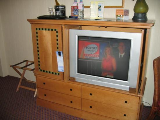 Hilton Orlando Lake Buena Vista - Disney Springs™ Area: Awesome huge TV