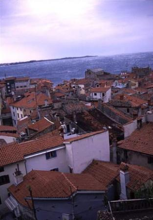 Piran, Slovenië: View from St. George's Church over the rooftops -- Adriatic and Croatia in the distance