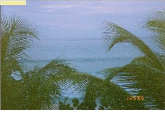 Galley Bay Resort : View