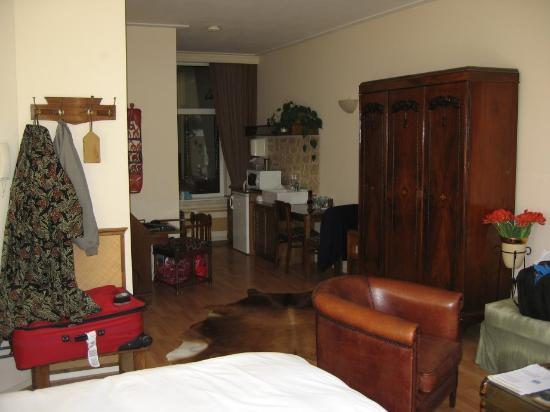 Suite 259: Safari room, looking toward the well stocked kitchenette