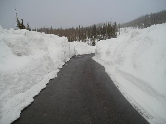 Cedar Breaks Lodge: Typical roads in March