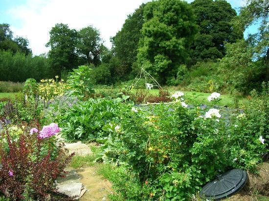 L'Arc en Ciel : vegetable gardens