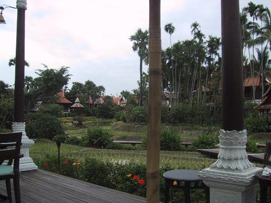The Dhara Dhevi Chiang Mai : Another view of the grounds