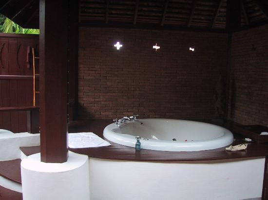 The Dhara Dhevi Chiang Mai: Another shot of our hot tub
