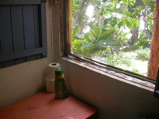 Casa Iguana: The broken windows, I fixed with paper.