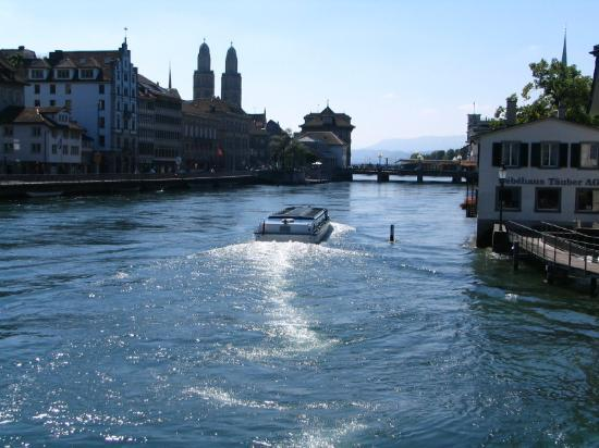 Hostel Krone: Giant Bedbug Swimming up the Limmat River in Zurich ;<)