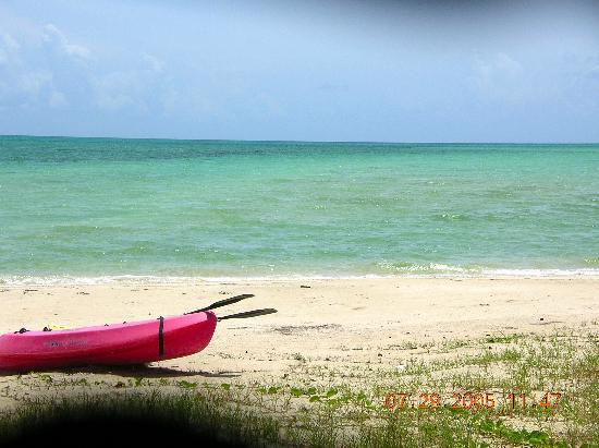 Andros: Kayak, anyone?