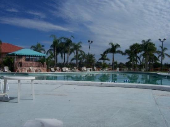Royal Inn: the pool!!