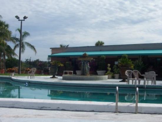Royal Inn: more of the pool!!!