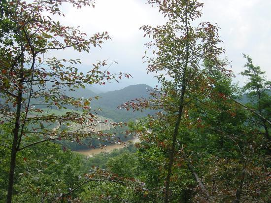 French Broad Outpost Ranch: View from a trail