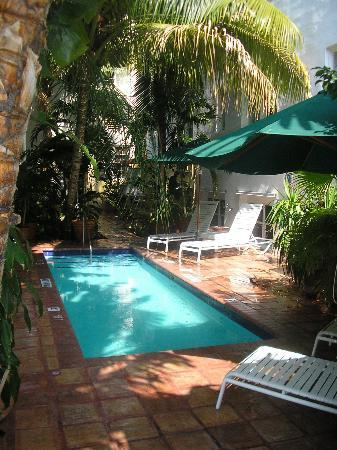 The President Hotel - Miami Beach: Wadding Pool!  Relaxing!