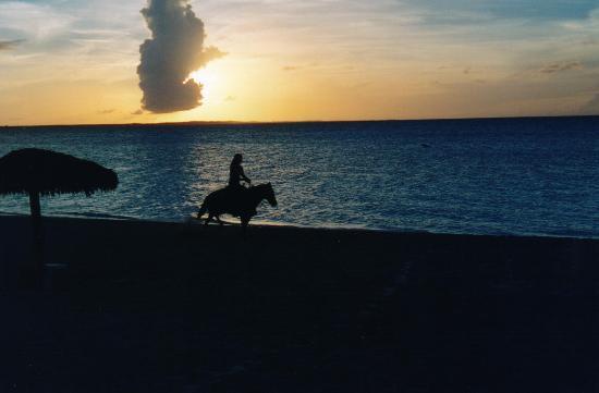 The Seagate: Hemmingways sunset