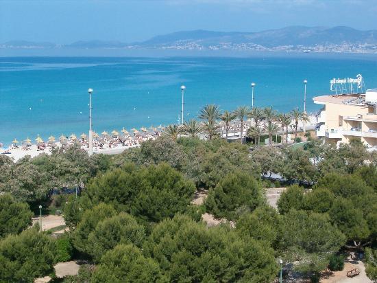Leman: Beach View