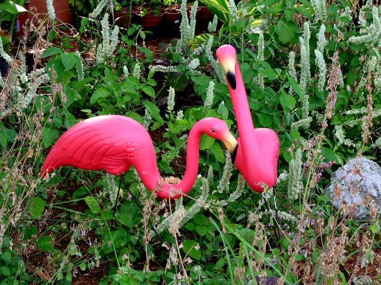 Haleys Motel and Resort: Flamingos are an appropriate decoration on the motel grounds