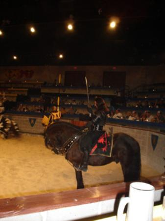 Medieval Times Maryland Castle