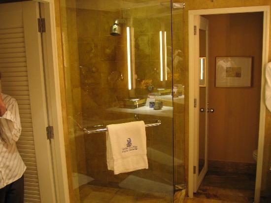 The Ritz-Carlton, Millenia Singapore: Bathroom shower stall and separate toilet