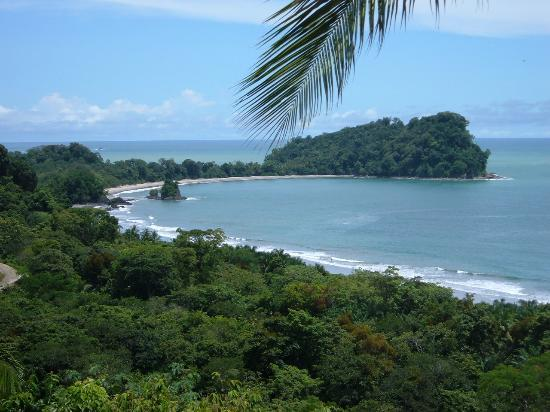 Hotel Costa Verde : View from the pool of Manuel Antonio park and beach