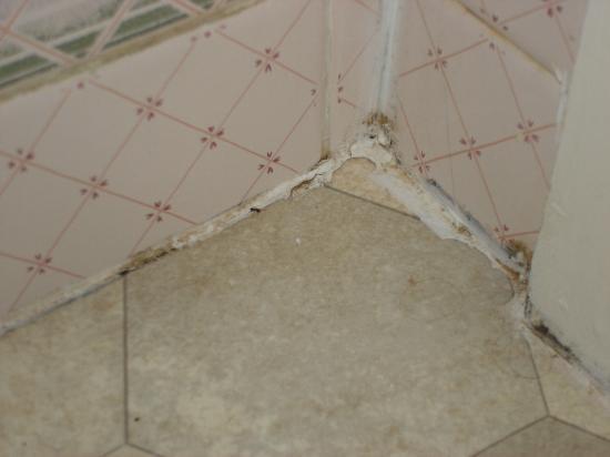 Merlewood Hotel: bathroom floor