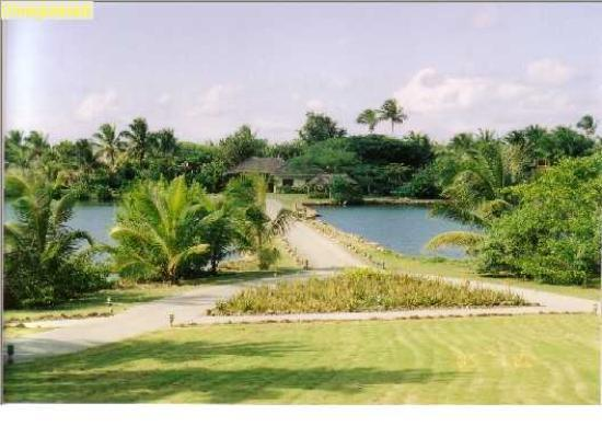 Galley Bay Resort & Spa: Entrance to Galley Bay