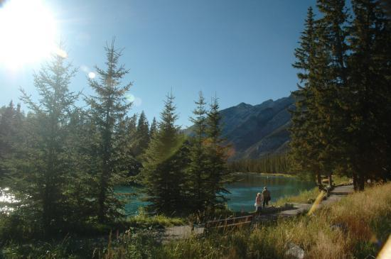 Banff Park Lodge Resort and Conference Centre: Bow River behind the hotel