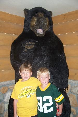 Tundra Lodge Resort Waterpark & Conference Center: Bear Fans!