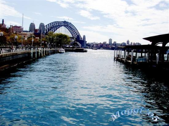 The Crest Hotel: Sydney Harbour Bridge viewed from Central Quay