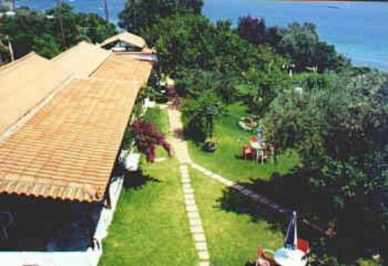 Bilde fra Angeliki Beach Hotel