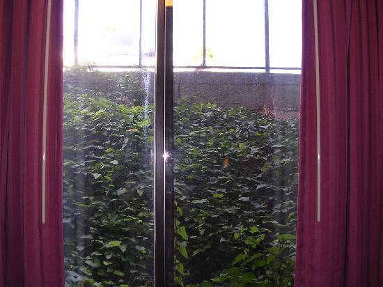 Days Inn Richfield: view from the basement room window