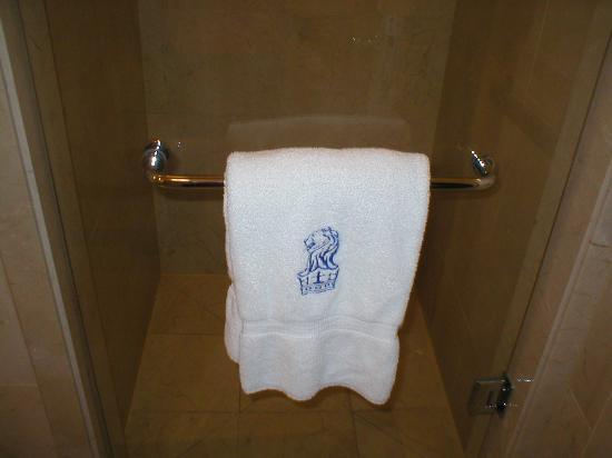 The Ritz-Carlton, Santiago: Shower and towel