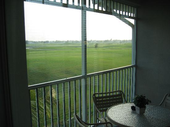 GreenLinks Golf Villas at Lely Resort: View from our room