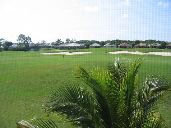 GreenLinks Golf Villas at Lely Resort: View from our room (Flamingo Course)
