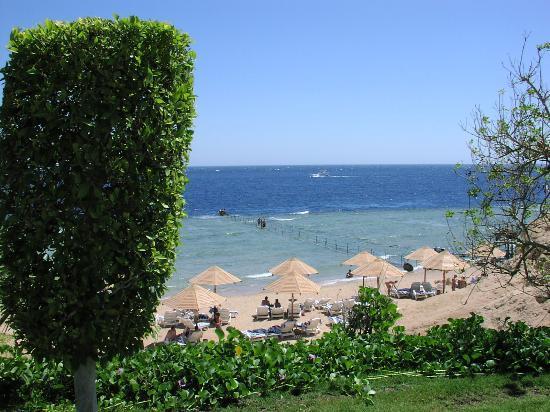 Landscape - Hilton Sharm Waterfalls Resort Photo