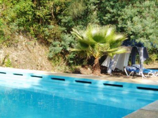 Quinta da Capela: Intimate pool with view to the coast