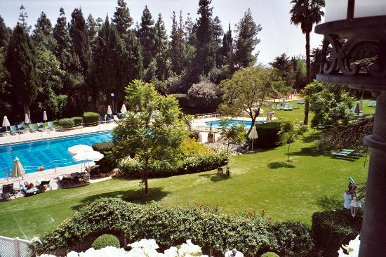 The King David: Swimming pools and gardens