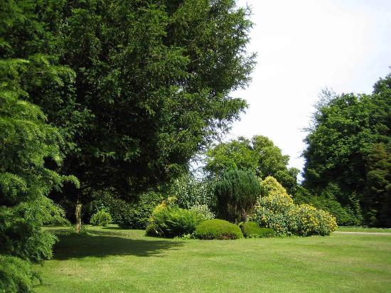 South Allington House: The beautiful Garden from The Laurels cottage.