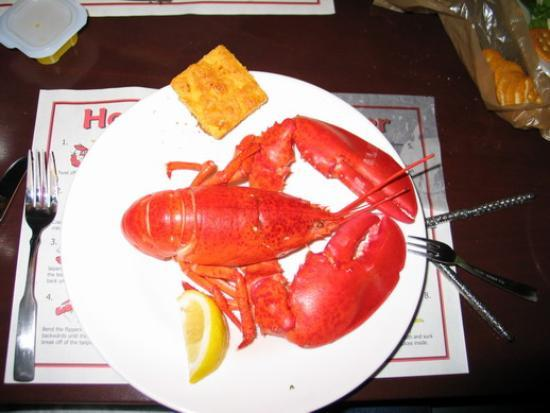 Quincy, MA: Lobster from the restaurant (came with corn bread, potatos and veggies)