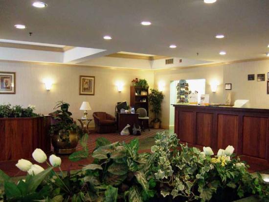 Holiday Inn Express Hotel & Suites Burlington South: Lobby 1