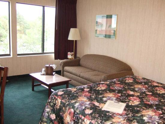 Holiday Inn Express Hotel & Suites Burlington South: Room view 1