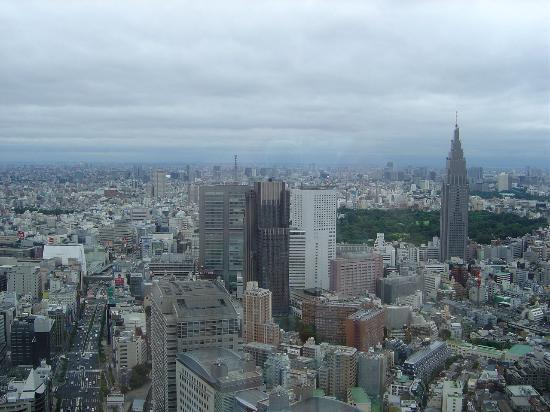 Park Hyatt Tokyo: City view from the 46th floor 1