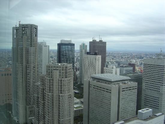 Park Hyatt Tokyo: City view from the 46th floor 3