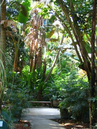 Sunken Gardens St Petersburg 2019 All You Need To Know Before You Go With Photos