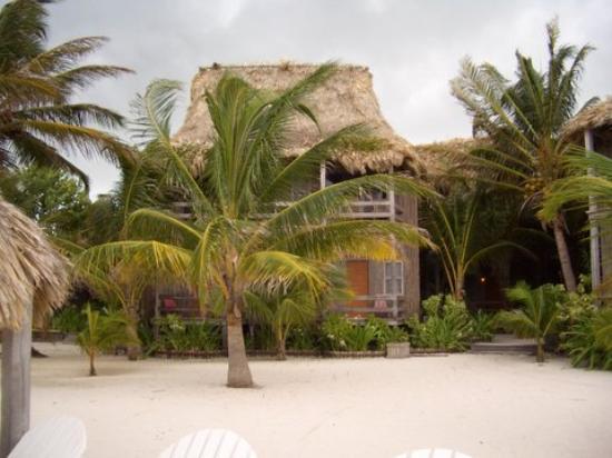 Ramon's Village Resort Foto