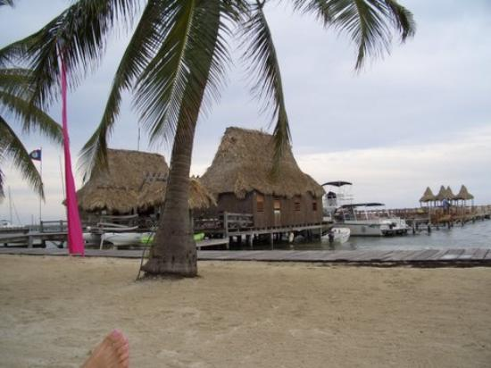 Ramon's Village Resort Photo