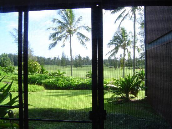Estates at Turtle Bay: Looking out the back door
