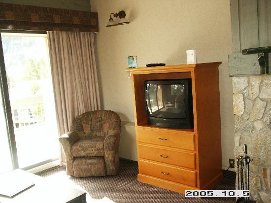 Douglas Fir Resort & Chalets: Livingroom 1