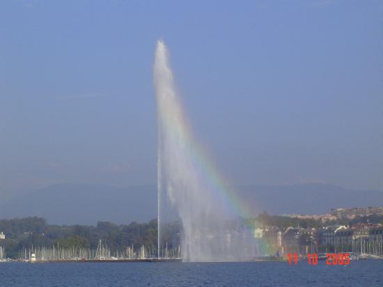Hotel Edelweiss - Manotel Geneva: Guess What?