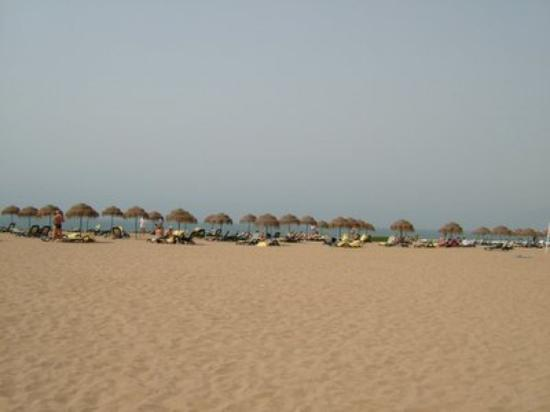 Iberostar Founty Beach: private hotel beach