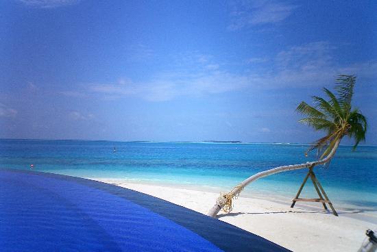 The pool picture of conrad maldives rangali island for Conrad rangali maldivas