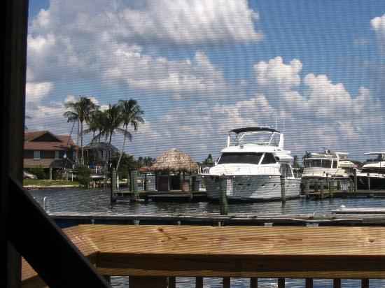 Marco Island Marina: Jack's lookout bar at Marco River Marina. GREAT PLACE